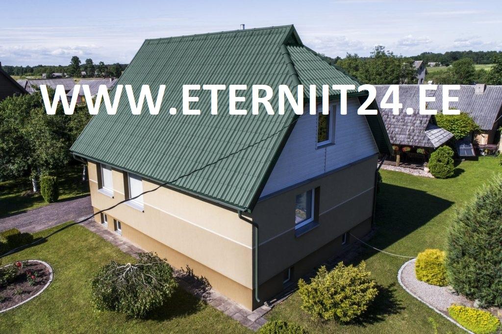 ETERNIIT GOTIKA 585X920 ROHELINE